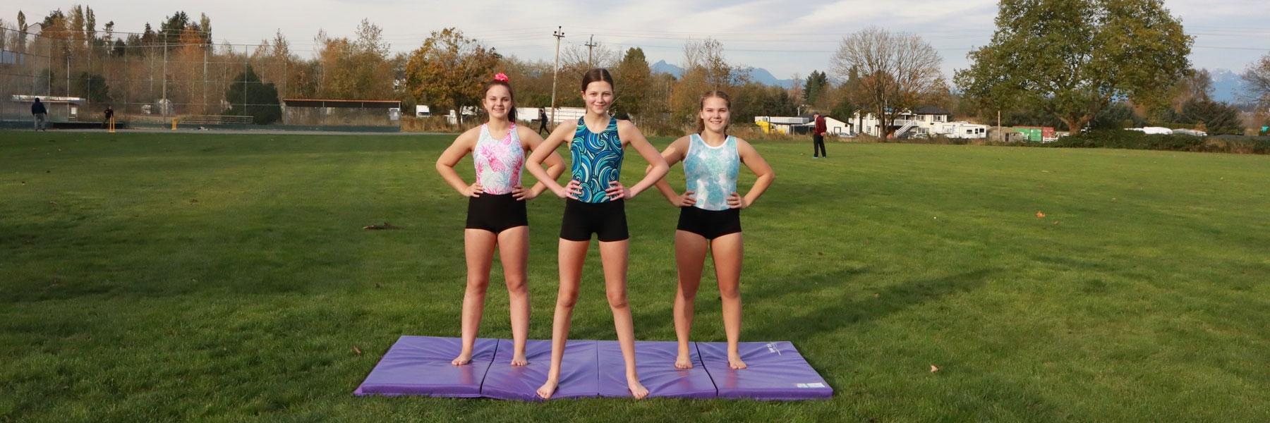 3gymnasticsleotards2